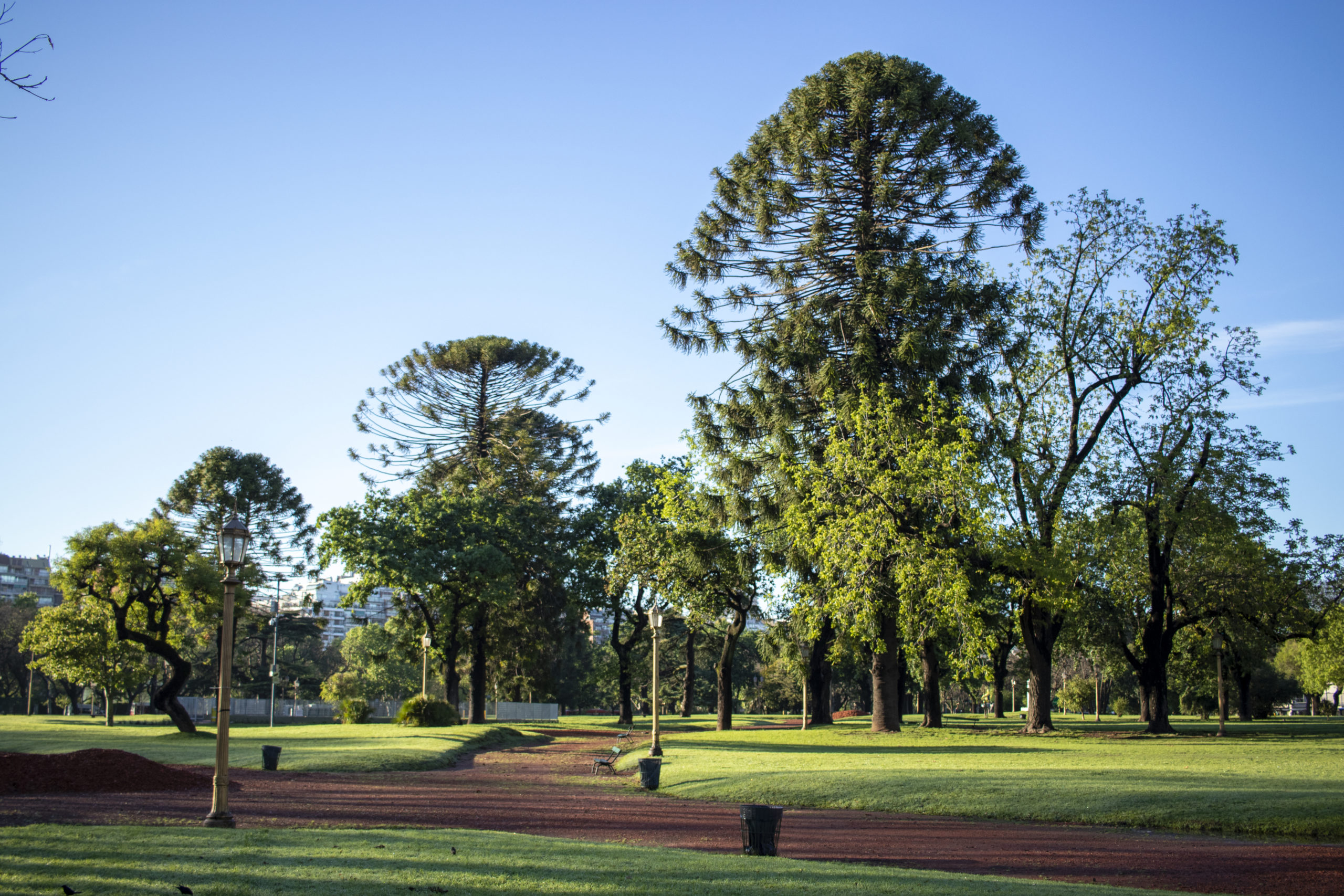 View of a beautiful park with green areas and reddish soil, located within the city